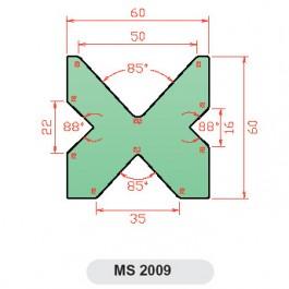 MS 2009